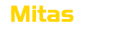 MITAS-Effective Process Management